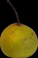 Boy Pear